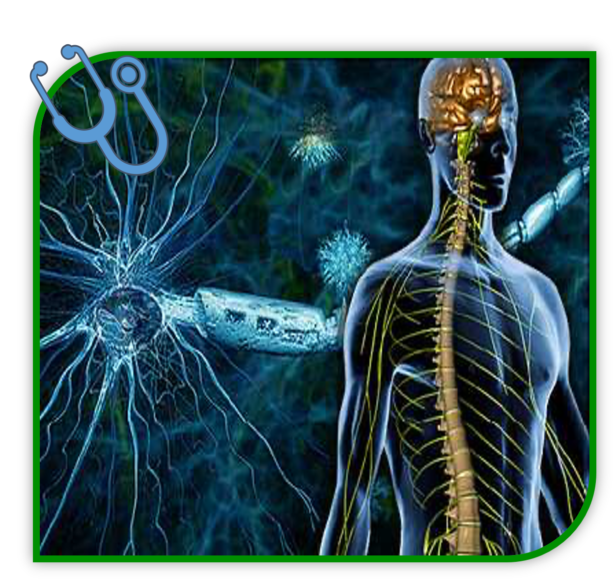 Multiple Sclerosis Symptoms and Causes
